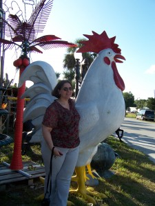 A Big Chicken